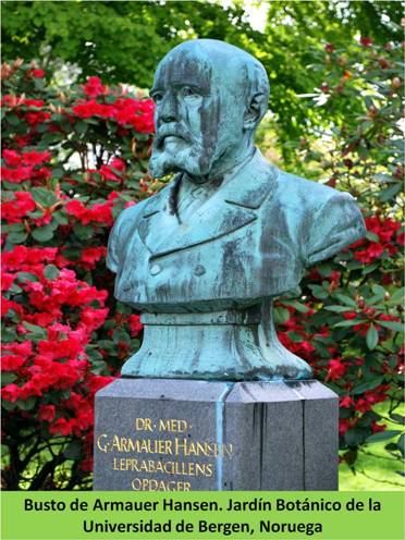 Busto del Dr. Hansen en el Jardín Botánico de la Universidad de Bergen (Noruega)