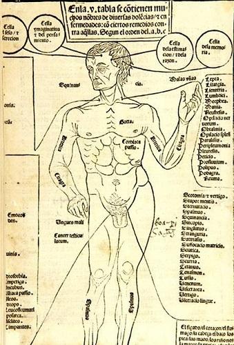 Representatividad, devoción y usos del libro en el mundo medieval (Folio Complutense)