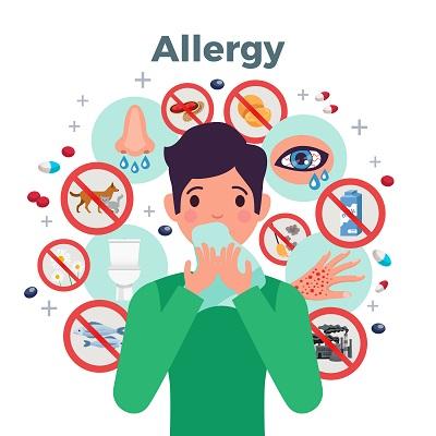 Diseñan inmunotoxinas como nuevas herramientas terapéuticas contra la alergia