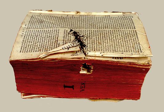 Objetos encontrados en libros