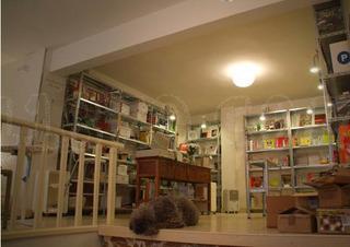 Librería Merienda en el tejado