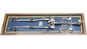 Esqueleto de Agustin Luengo y Capilla
